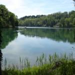 Der Rhein lädt zum Bade